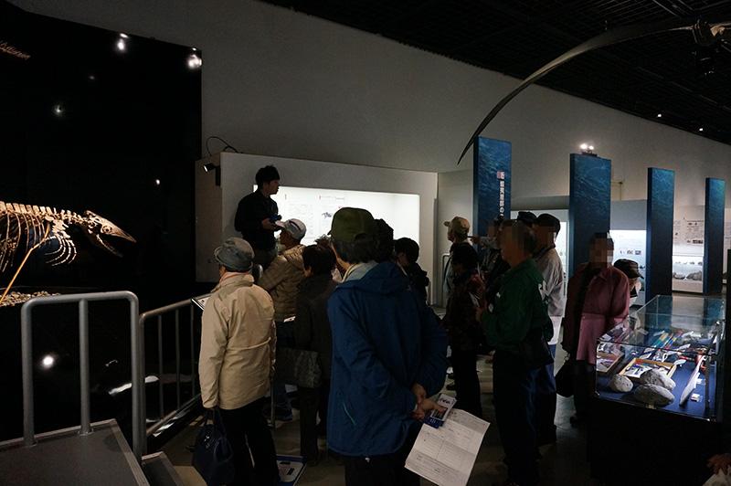 博物館の中
