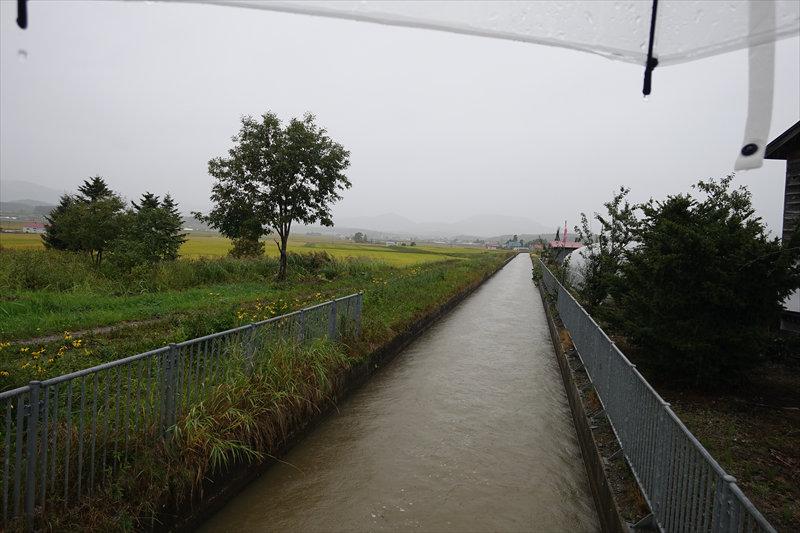 川も増水中